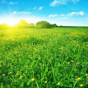 Sunshine 101: A Sunblock Primer