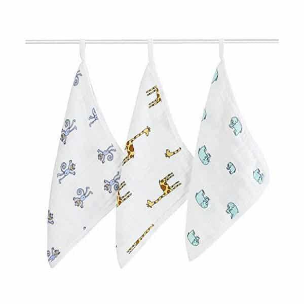Aden & Anais Washcloth Set